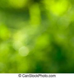 녹색의 발췌, 제자리표, bokeh, 배경