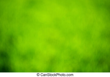 녹색의 배경