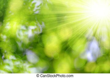 녹색의 배경, 자연