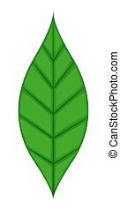 녹색의 잎