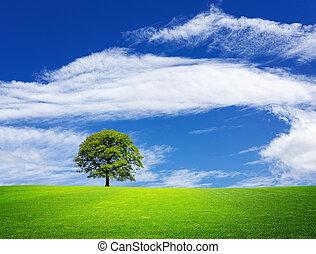 녹색의 풍경, 자연