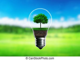 녹색, 묘종, 에서, a, 전구, 교체 에너지, 개념, 녹색, 희미해지는, 배경.