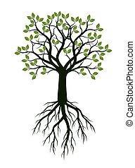 녹색, 봄, 나무, 와, leaves., 벡터, illustration.