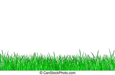 녹색 잔디, 고립된