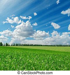 녹색 잔디, 억압되어, 흐린, 푸른 하늘