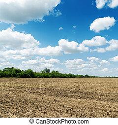 농업 들판, 후에, 수확, 억압되어, 흐린, 푸른 하늘