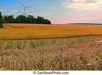 농업, 조경술을 써서 녹화하다