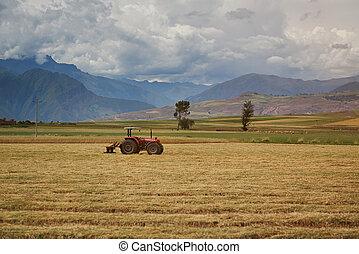 농업, 트랙터, 통하고 있는, 들판