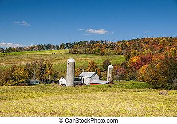 농장, ny, 시골