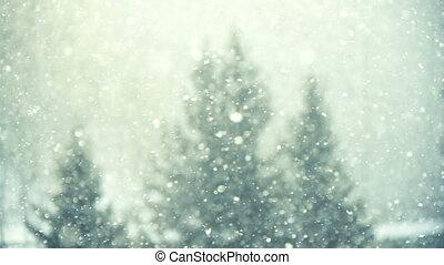눈이 내림