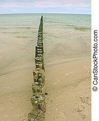 늙은, 멍청한, groyne, 구조, 덮는, 와, 녹색, 말, 통하고 있는, 바닷가