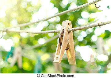 늙은, clothespin
