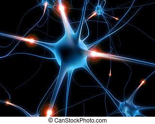 능동의, 신경 단위