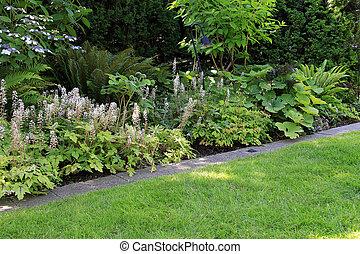 다년생 식물, 공원, 정원