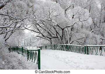 다리, 공원, 겨울