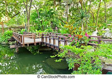다리, 나무, 정원