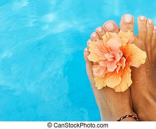 다리, 에서, 그만큼, 수영, pool., 휴가, 개념