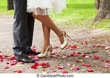 다리, 위의, 꽃잎