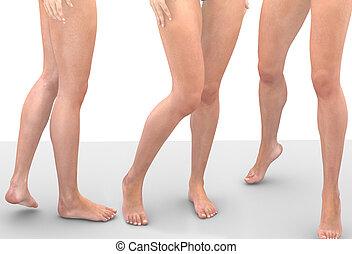 다리, 의, women.