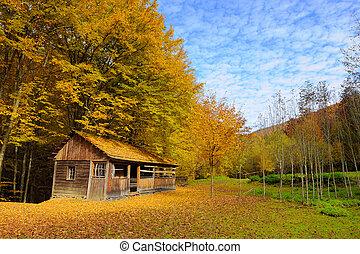 다만 ...만, 뿐, 집, 에서, 가을, 산