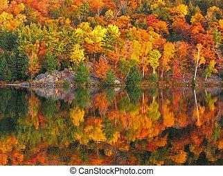 다채로운, 가을