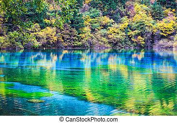 다채로운, 호수, 에서, jiuzhaigou, 골짜기