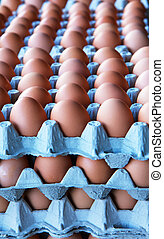 달걀, 더미