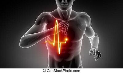 달리기, 남자, 와, 심장, 맥박 자취