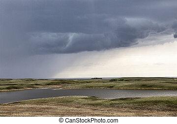 대초원, 구름, 폭풍우