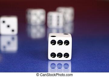 도박을 하다