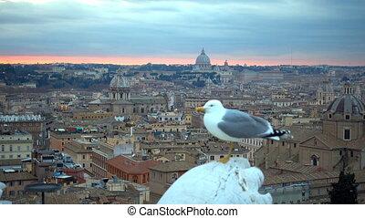 도시, 이탈리아, 도시 풍경, 지평선, 로마, vatican, 경계표, 해돋이