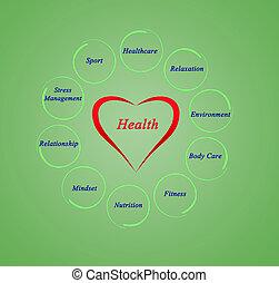 도표, 의, 건강