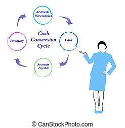 도표, 의, 현금, 전환, 주기