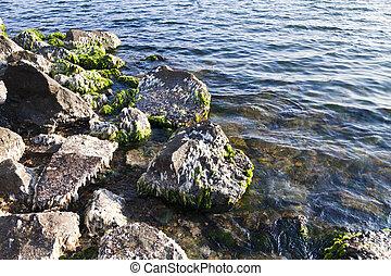 돌, 에서, 물