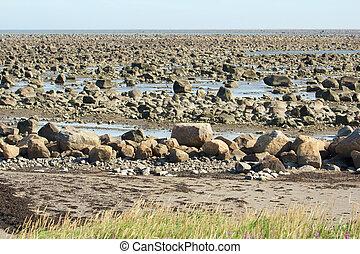 돌, hudson 만, 조수, 낮은, 사막