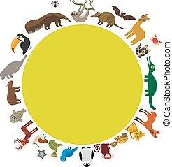 둥근, frame., 나태, 개미핥기, toucan, 라마승, 배트, 도장, 아르마딜로, 보아, 해우, 원숭이, 돌고래, 갈기늑대, 너구리, 재규어, 히아신스 macaw, 도마뱀, 거북, 악어, 사슴, 펭귄, 푸른발부비, capybara., 벡터
