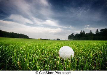 들판, 공, 골프