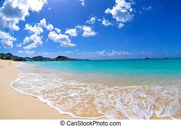 떠는, caribbean 해변