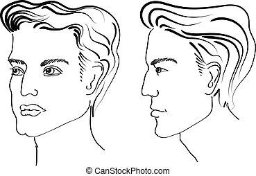 머리 형, 성분, 치고는, 살롱, 와, face., 벡터, 초상, 의, 남자