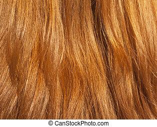 머리, close-up., 여성, 빨강
