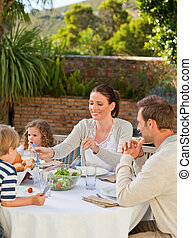 먹다, 가족, 정원