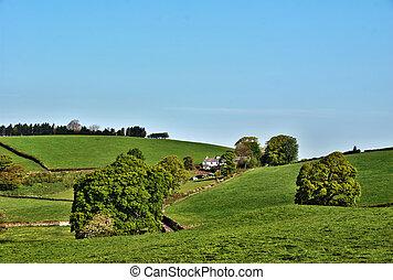 멀리 떨어진, 농가, 에서, 영국 시골