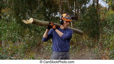 멍청한, 통나무, 름b어rjxxk, 나름, 4k