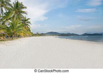 모래 바닷가