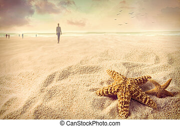 모래, 불가사리, 바닷가
