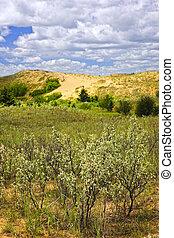 모래 언덕, 매니토바, 모래