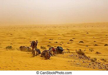 모래 폭풍, 장면, 사막