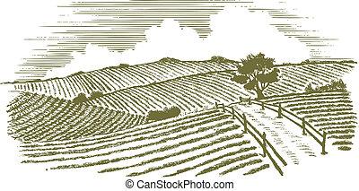 목판화, 시골