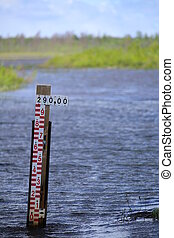 물, 수준, 물때, 에서, a, 스웨덴어, 호수