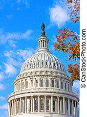 미국 미 국회의사당, 건물, 에, 가을, 새벽